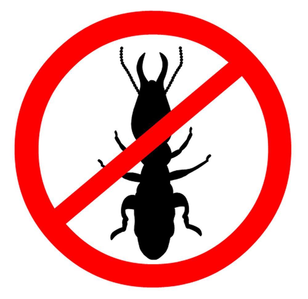 43463974 - Beware Termites Symbol